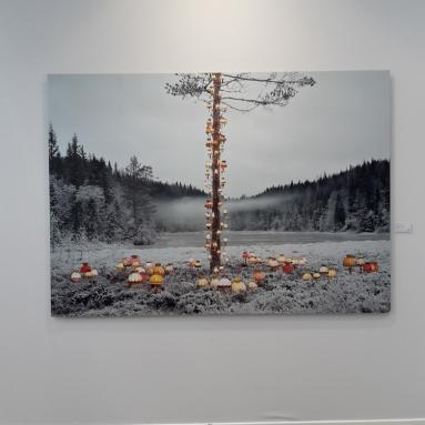 "Rune Guneriussen, ""At no time defeat sunrise"". Digital c-print/aluminium, 150 x 211 cm."